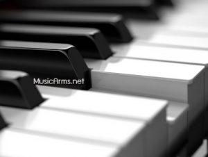 HP702 ลิ่มเปียโนซูม