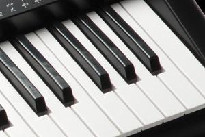 Kurzweil KP70 Keys