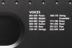 Kurzweil KP70 Voice
