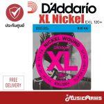 Daddario XL Nickel ขายราคาพิเศษ