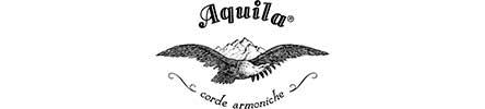 รวมแบรนด์ Aquila