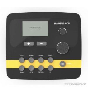 Hampback DSP-1201