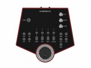 Hampback DSP-7001
